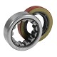 AK 1563 - Yukon Rear Axle Bearing and Seal Kit for Various Differentials