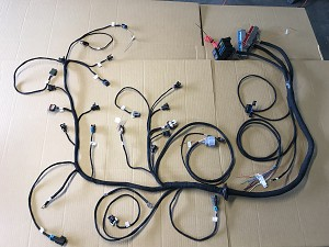 RBDBCEV14L60E+PCM - 99-02 LS1/LSx/Truck DBC EV1 4L60E w/PCM and Custom  Tuning